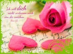 12 Minikarten Rosa Rose/Herzen - Boalanz
